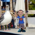 """I\'ve never been this close to a seagull.  Cool!"